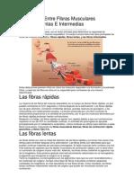 Diferencias Entre Fibras Musculares Rápidas.docx