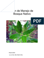 Plan de Manejo Bosque Nativo