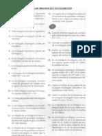 Guía de Ejercicios de Tríangulos y sus Elementos
