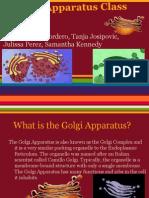 golgi apparatus class lecture
