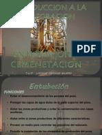 Entubacion-Cementacion -