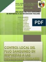 Control Local Del Fujo Sanguineo - Fisiologia
