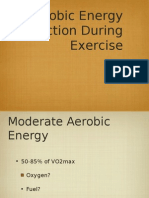 Aerobic Energy Production During Exercise