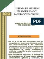 Sistema de Gestion en Seguridad y Salud Ocupacional