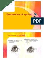 Enucleation of Eye Ball(dog)