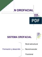 24.08.2011-Función Orofacial.