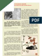 Te Verde...un toccasana naturale  SanBao Mag 2007-05.pdf