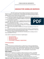 Unidad Nº 24 Lesiones causadas por animales marinos 2003
