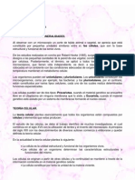 celulaeucariota1-10_1