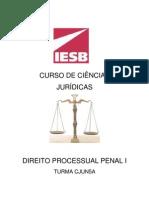 Roteiro de Aula Direito Processual Penal i