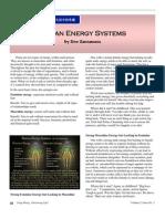 Human Energy Systems  Yang-Sheng 2012-03.pdf