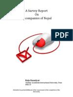 Survey Report on IT companies of Nepal