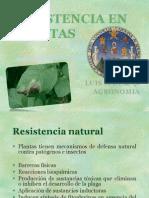 Resistencia de Las Plantas a Insectos Patogenos
