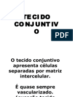 tecido conjuntivo - Prof Diego