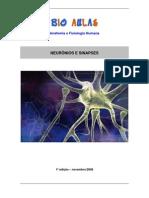 neuronios_sinapses