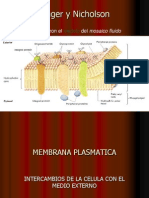 2009 Membrana plasmatica transporte