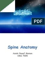 Final Spinal Presentation