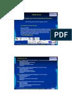 Presentation Curso FD ML-Sinergias_jun_2013