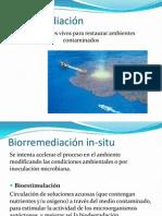 Biorremediación.pptx