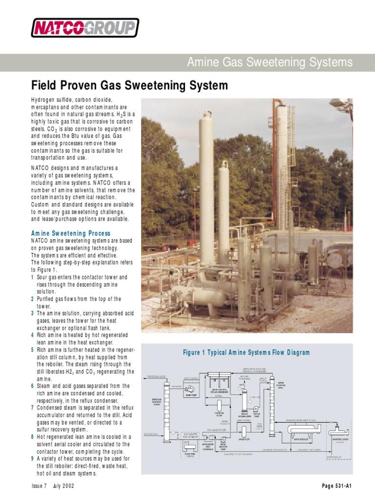 Amine Gas Sweeteningpdf Natural Energy Production Process Flow Diagram