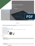 ED2_practica3.pdf