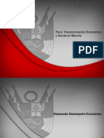 Informe_Preelectoral_2011