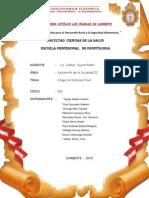 ETAPA DE INFORME FINAL DIAZ GONZALES VLADIMIR.pdf