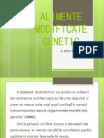 Alimente Modificate Genetic. Slivciuc Rada, Gr-b-21