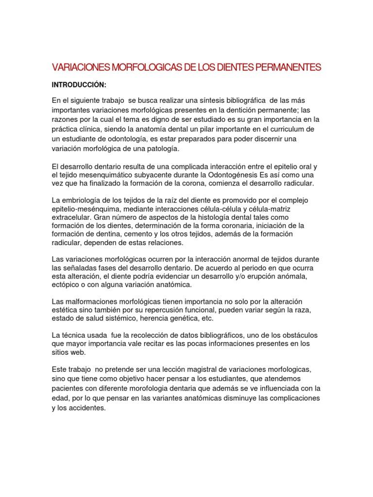 Dorable Anatomía Dental Y Las Notas De Histología Dental Motivo ...