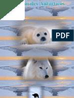 Animales Antarticos
