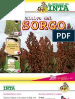 sorgo-4