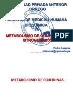 Metabolismo de Compuestos Nitrogenados 2