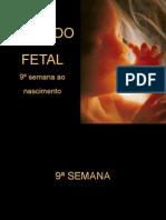 08-Período Fetal