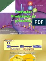 sntesedeprotenas-110222201455-phpapp01