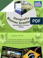 Biomas Brasileiros - Palestra