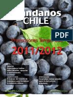 arandanos_201110