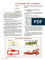 ciencia 4 2 bim 2.pdf