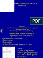 Rekayasa Gen Tanaman 2008
