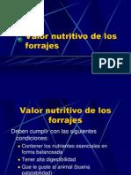 Valor Nutritivo de Los Forrajes