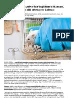 Arriva dall'Inghilterra Skimune, metodo alternativo alla vivisezione animale
