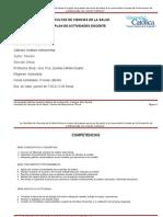 Plan_de_actividades_docente._Anßlisis_Instrumental._2013
