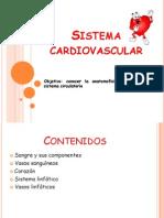 PDF Sistema Circulatorio