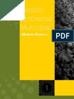 Gestão ambiental Municipal