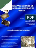 Principais Espécies de Pescado Produzidas no Brasil