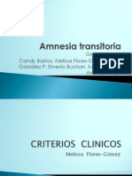 Amnesia Transitoria1