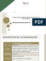 trabajo ejemplo diseño organizacional