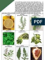 Sazonadores Naturales 002.pdf