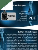 PP MIKVIR Kel 9B-Identifikasi Bakteri Patogen