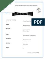 informe laboratorio 01