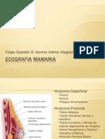Eco mama